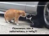 все ЖЕНЩИНЫ это делают )))
